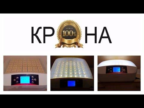 HHD 56 инкубатор из Китая.