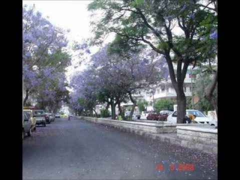 Damascus - Lattakia - Tartous