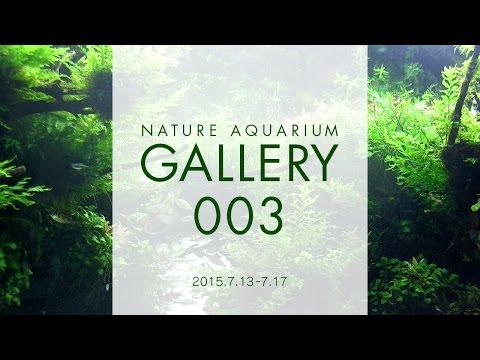 [ADAview] NATURE AQUARIUM GALLERY#003(EN)