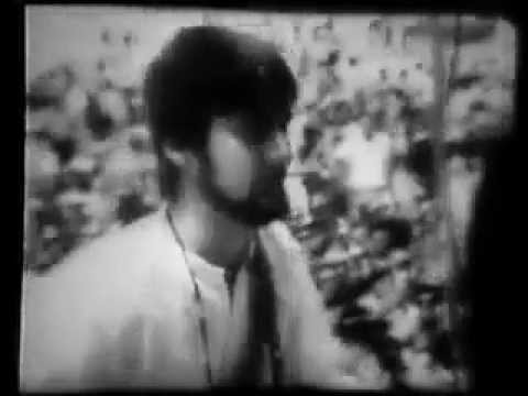 Grass Roots - Things I Should Have Said (Promo)