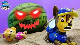 Paw Patrol Chase episode. A watermelon ghost has appeared.
