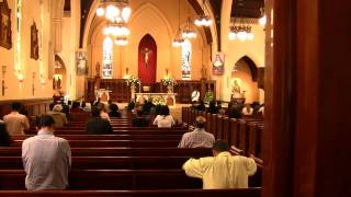 Communion during Novus Ordo Mass at St. Patrick