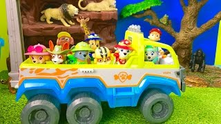 Best Learning Animals Video for Preschool Children - Paw Patrol Jungle Adventure
