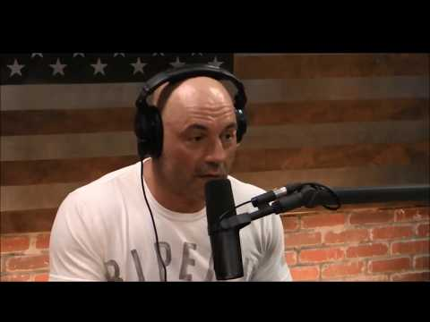 Download Lagu  Joe Rogan - LSD on a mountain - psychedelic experience Mp3 Free