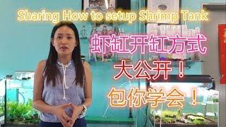 how to setup a shrimp tank 虾缸开缸方式 How To Setup & Cycle A Shrimp Tank