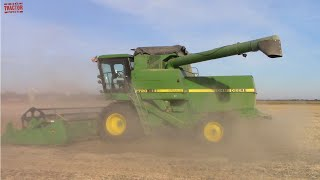 EIGHT GREAT 80's Era Combines Harvesting Soybeans