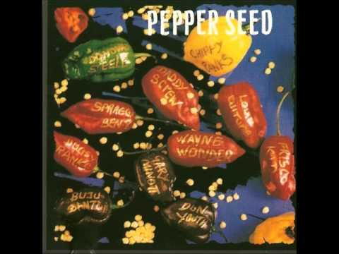 PepperSeed Riddim 1994 (Madhouse Music) Mix By Djeasy