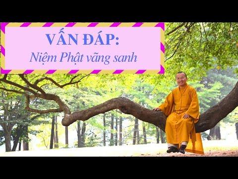 Vấn đáp: Niệm Phật vãng sanh