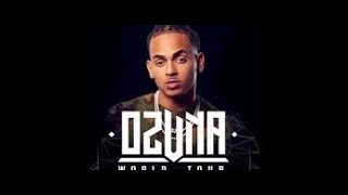 Most views Top 20 Songs of Ozuna