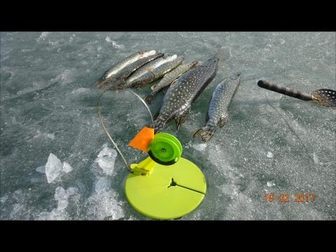 рыбалка на жерлицы 2017 год