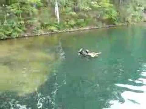 piper & ariel swimming