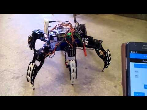 Final Year Project Project Spider Robot
