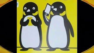 เน็ตรายวัน เน็ตรายสัปดาห์ เน็ตรายเดือน  ของซิมเพนกวิน วิธีสมัครโปรเสริมอินเตอร์เน็ตเล่นไม่อั้น 3G