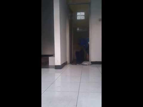 Ngintip Cewek Di Kamar Mandi video