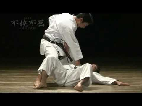 Naihanchi applications -Kata- Karate Shorin-ryu Image 1