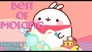 Best of Molang | Best Clips Compilation #1 | Molang and Piu Piu