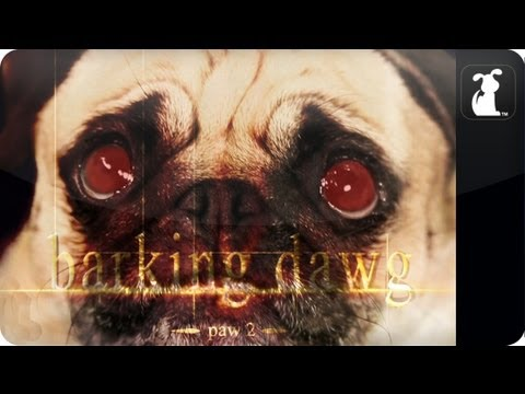 The Twilight Saga: Breaking Dawn Part 2 / Barking Dawg Paw 2 Petody