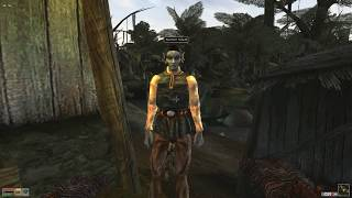 Morrowind, 120 mods, 350