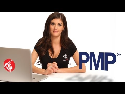 PMP (Project Management Professional) Training and Certification Boot Camp by SecureNinja