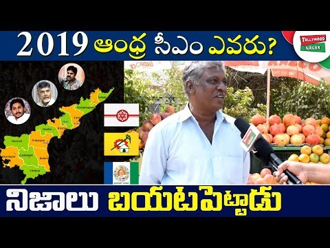 AP Native about Who Is The Next CM Of AP 2019 | Public Survey On AP 2019 Elections | Tollywood Nagar