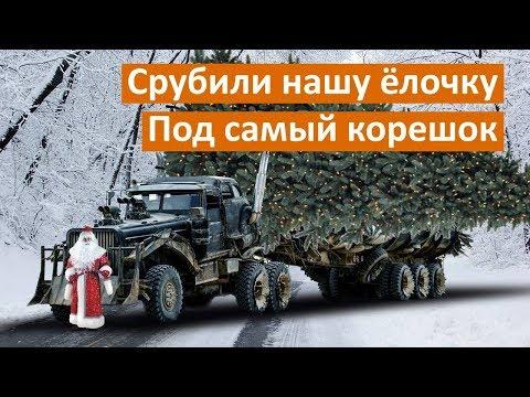 Теперь точно: смотрим в прямом эфире, как гигантскую ёлку везут в Екатеринбург