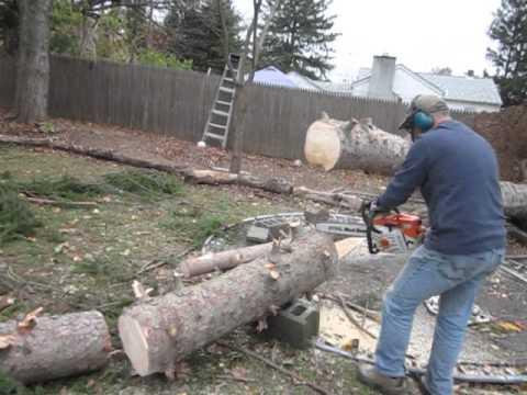 チェーンソーで木を切って...