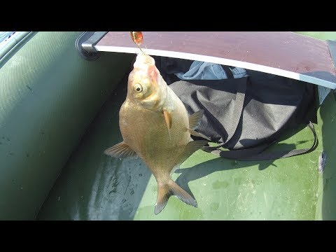 река щучья ямал рыбалка