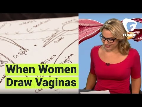 Vaginas, As Drawn By The Women That Own Them video