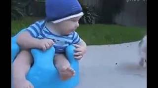 Very funny GIF, Funniest short clip, GIF