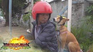 Matanglawin: Mia the 'Motor Dog'
