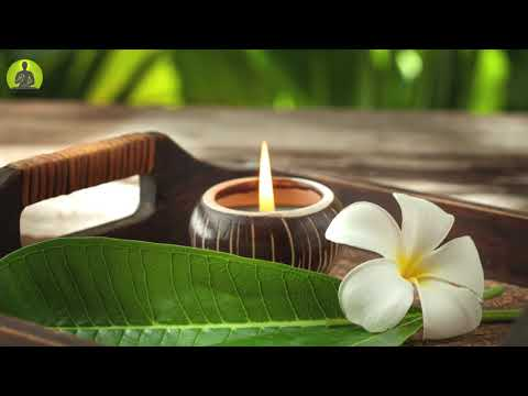 Let Go Of All Negative Energy Meditation Music, The Deepest Healing Music, Relax Mind Body