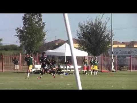 laredo community college soccer  palominos
