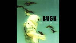 Watch Bush The Disease Of The Dancing Cats video