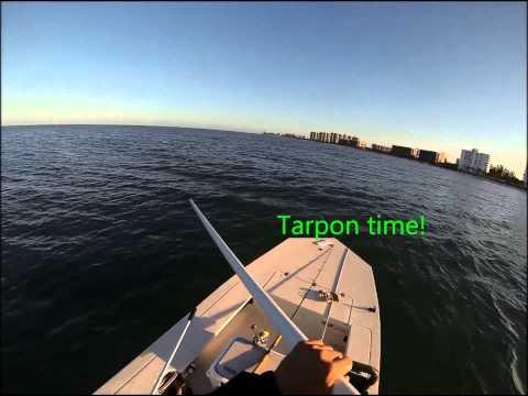 Sarasota fishing w/ BreakWater Charters