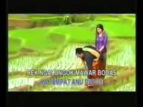 Mawar Bodas ~ lagu sunda