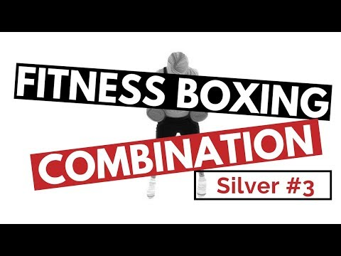 Fitness Boxing Combination, SILVER #3 for Punching Bag, Mirror Boxing, Focus Pads Image 1