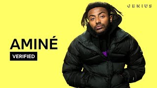 Aminé 34 Dr Whoever 34 Official Meaning Verified