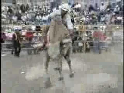 Jaripeo en Jaripeo Michoacán 14_mayo_2006 Video