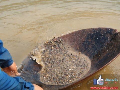Find Gold Mekong River (ร่อนทองแม่น้ำโขง หาดูยากมาก)