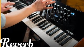 Korg Prologue Polyphonic Analogue Synthesizer | Reverb Demo Video
