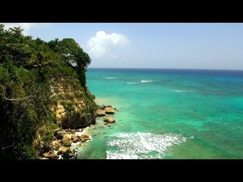 Relaxing Music ☯ Soft Calming Tracks with Ocean Webcam HD 1080p Video