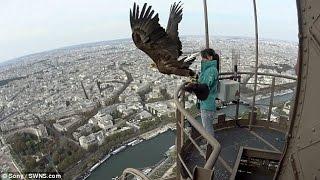 Փարիզն արծվի «աչքերով»