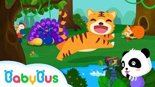 Friends Of The Forest | Game Preview | Educational Games for kids | BabyBus