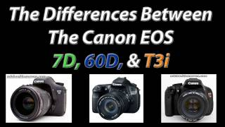 Canon 7D, 60D, and T3i Comparison • Which Camera Body is Right for You?