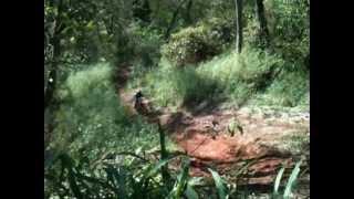 download lagu Samu Subindo Pedrazoli De Crf 450 R Com Escapamento gratis