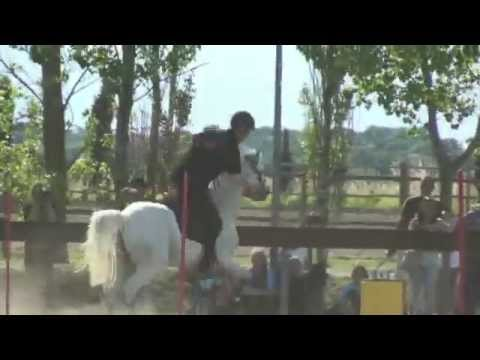 Mounted Games - Italian Champions 2014 Team Mugnano Open