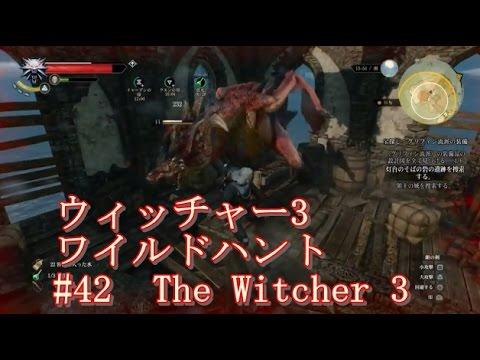 ウィッチャー3 ワイルドハントの画像 p1_27