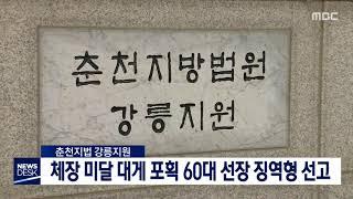 체장 미달 대게 포획 60대 선장 징역형