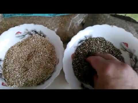 Вермикулит для растений – для чего нужен и как применяют?