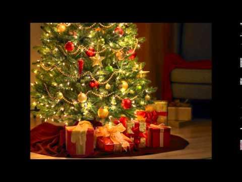The Jingle Bells! - Kerstmis voor Iedereen